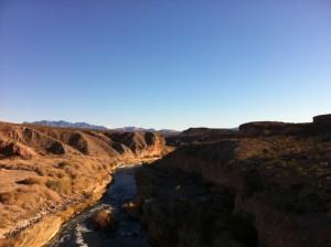 Marathon Man - Nevada Desert
