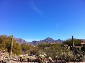 Marathon Man - Phoenix Desert
