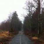 Marathon Man - Woolley Trail Run